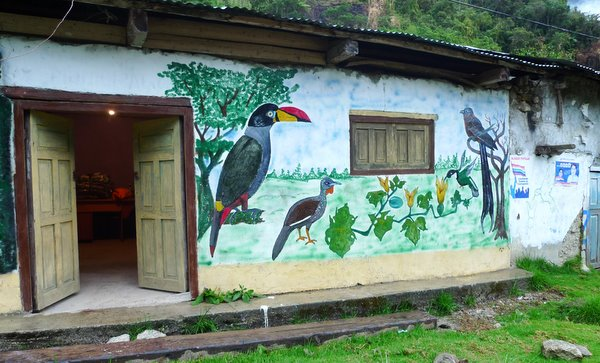 Apaya Birding Lodge. Satipo road. Photo: Juan Chalco.