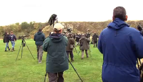 Twitchers: A very British obsession