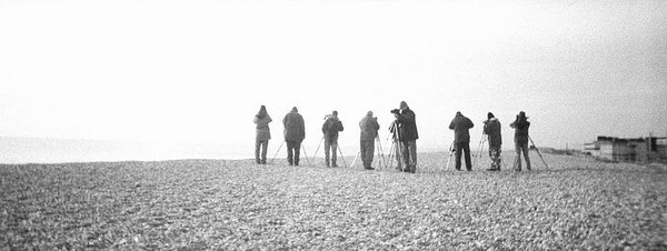 Twitchers. Andy Wilson.  Flickr. Creative Commons.