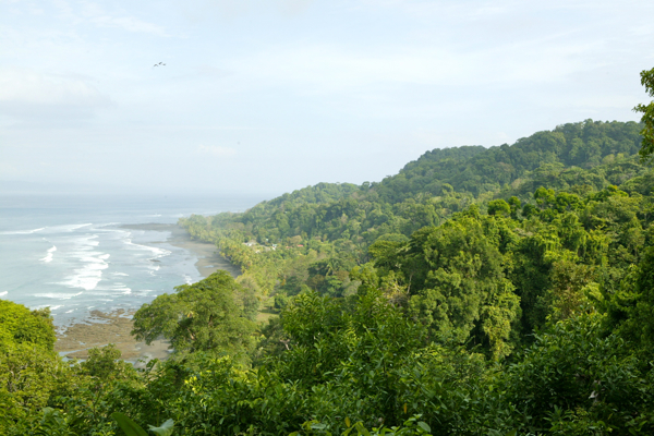 View over the forests of Punta Banco, Costa Rica. Photo by Dale Forbes