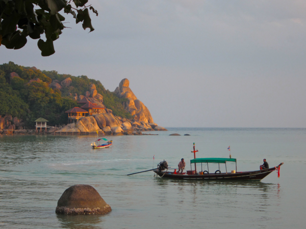Post image for Birding & Diving Kho Tao, Thailand