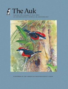 Sira Barbet Capito fitzpatricki- The Auk Volume 129, Number 3, July 2012.