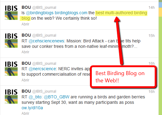 We are proud to hear that BOU/Ibis  blog nominated Birdingblogs to the best multi author birding blog on the Web.