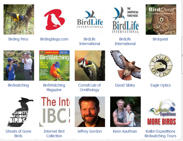 Facebook Interest Lists - World Birding